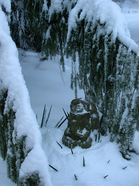 Ganapati in the snow, kitchen garden